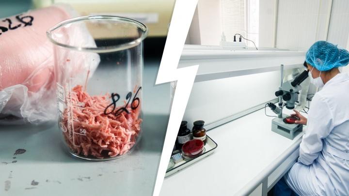В колбасе Ишимского мясокомбината нашли опасные добавки