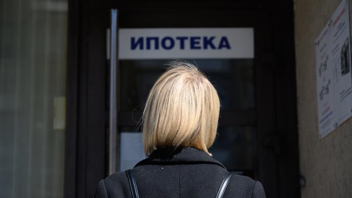 С начала года банки резко сократили число выданных кредитов обычным красноярцам