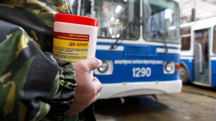 Отменяют автобусы, трамваи и троллейбусы: общественный транспорт Волгограда работает в режиме выходного дня
