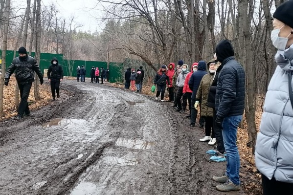 Люди собрались, чтобы защитить лес от застройки