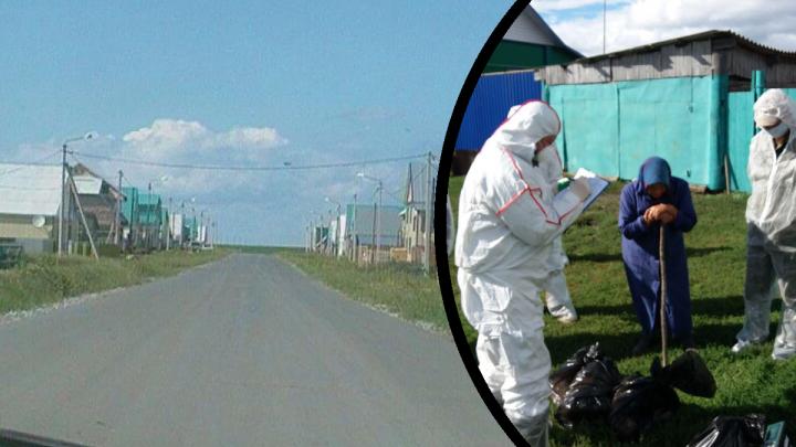 162 рубля за килограмм уничтоженной курицы: жительница Бердюжья рассказала о птичьем гриппе в селе