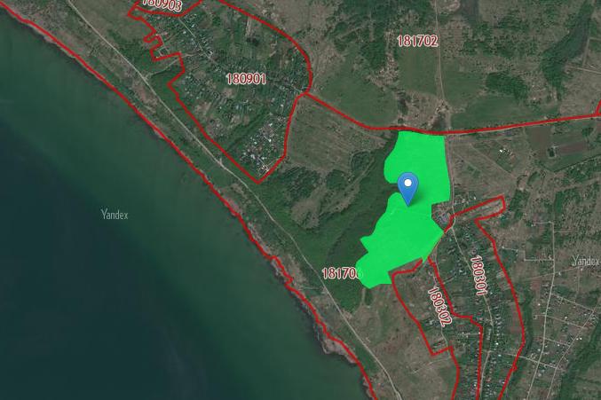 Этот участок площадью286 тысяч квадратных метров хотят присоединить к деревне Криушкино и использовать как зону отдыха