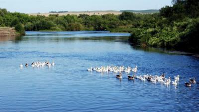 На очистку реки Дема в Башкирии потратят свыше 246 миллионов рублей