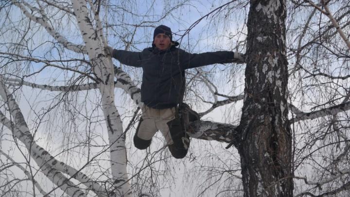 Тиктокер «омский колхозник» упал с березы и повредил руку