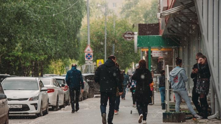 Подробный прогноз погоды на всё лето: Тюменскую область ждут дожди вразгар теплого сезона