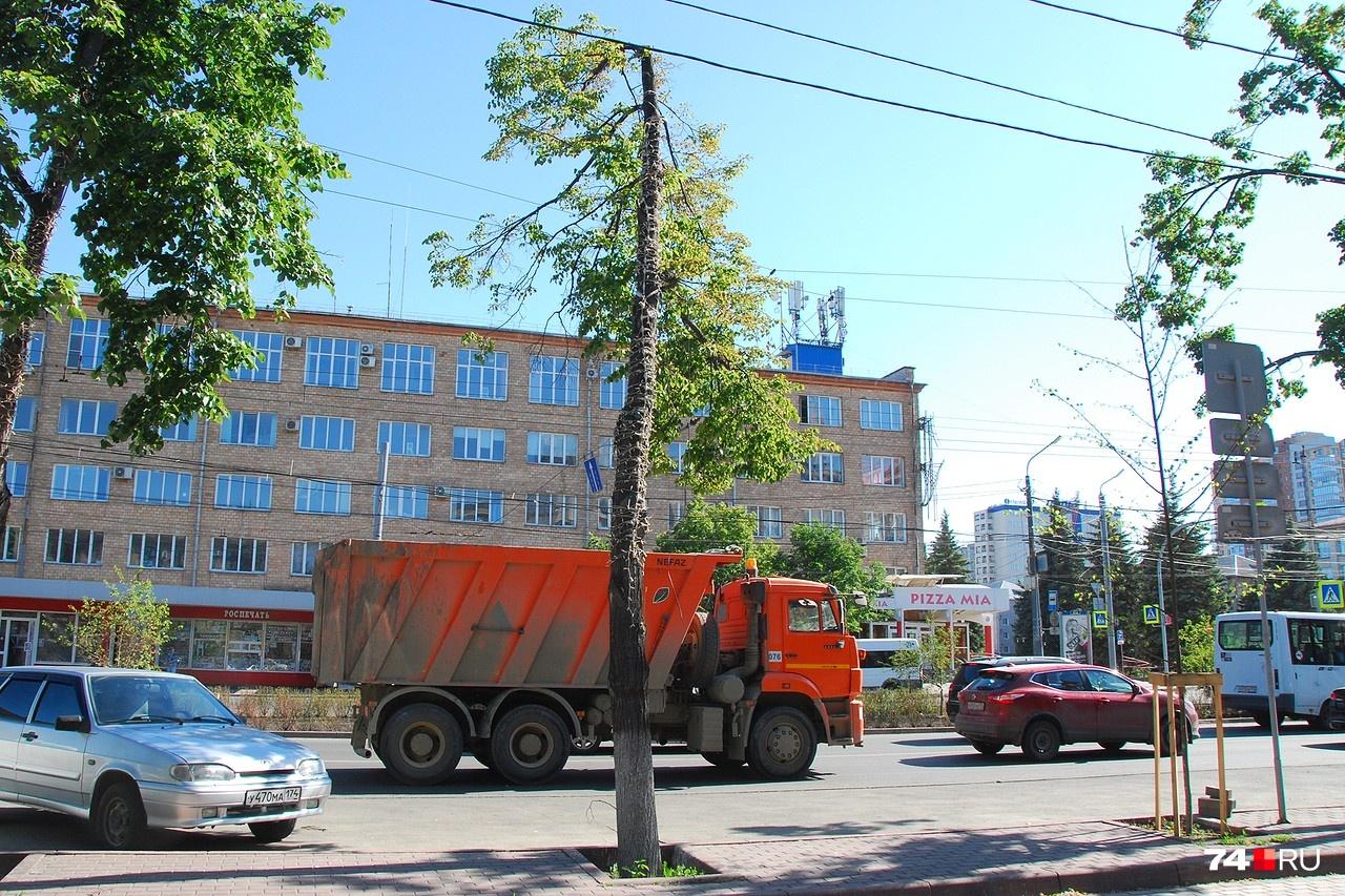 От дерева осталась кочерыжка (проспект Ленина)
