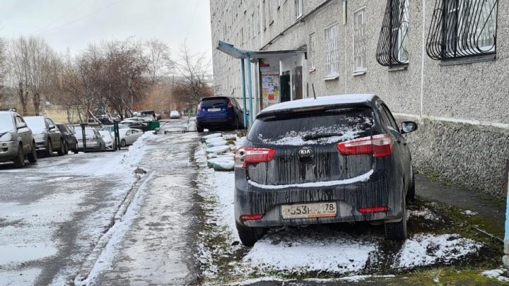 Мэр Екатеринбурга посоветовал горожанам, как бороться с гряземесами