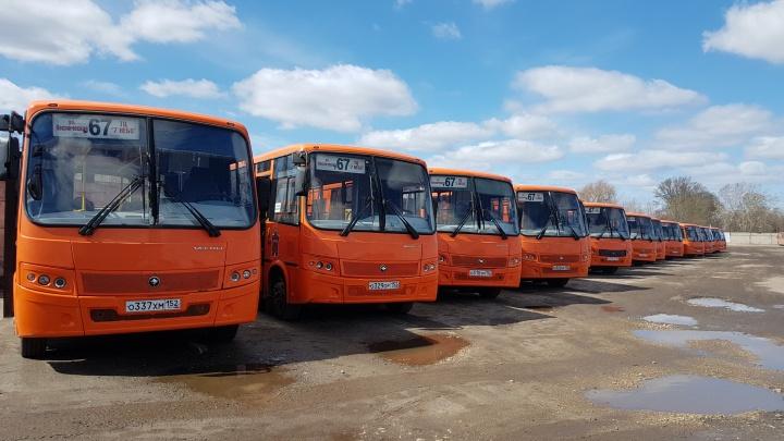 Минтранс разрешил маршрутке № 67 вернуться на дороги Нижнего Новгорода