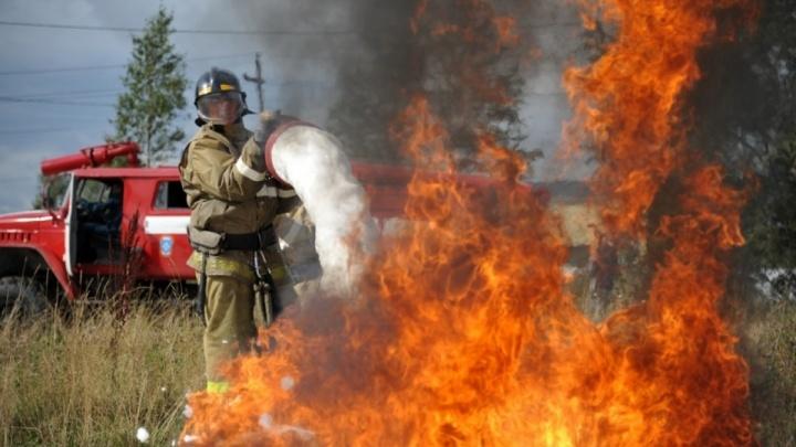 Парламент Кузбасса предложил поднять штрафы за поджог травы в 10 раз