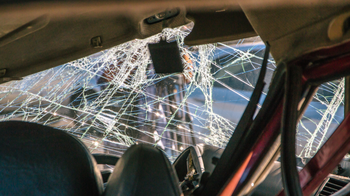 В Самарской области пассажирка иномарки погибла после столкновения с лосём