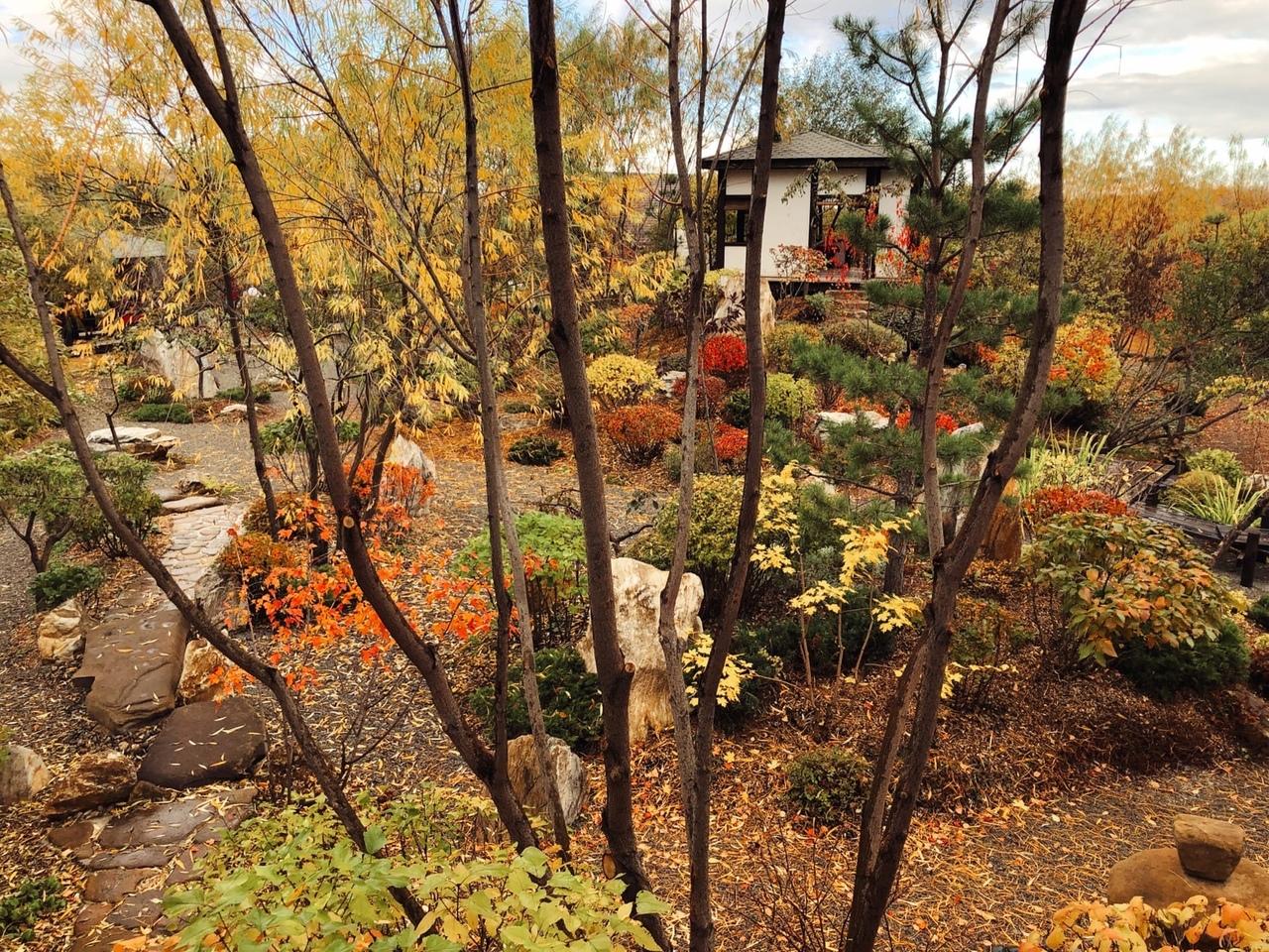 Осень в японском саду обворожительна