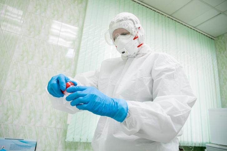 Информация о положительных анализах на коронавирус уходит в Роспотребнадзор