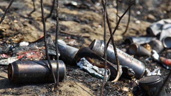 «Из-за дыма не видно дороги»: сильный ветер распаляет пожар в Городищенском районе