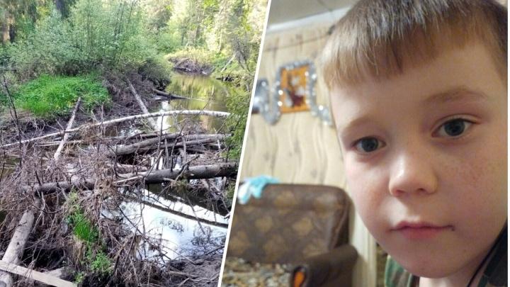 «Ничего не ел, пил из ручьев»: родители мальчика из Гайн рассказали, как он провел в лесу три дня