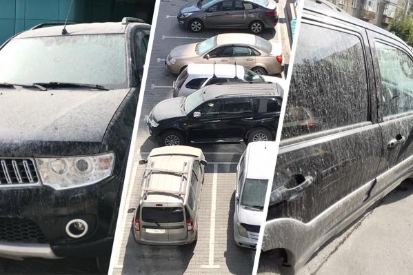 Сейчас автовладельцы пытаются отмыть свои машины и собирают чеки с автомоек и СТО