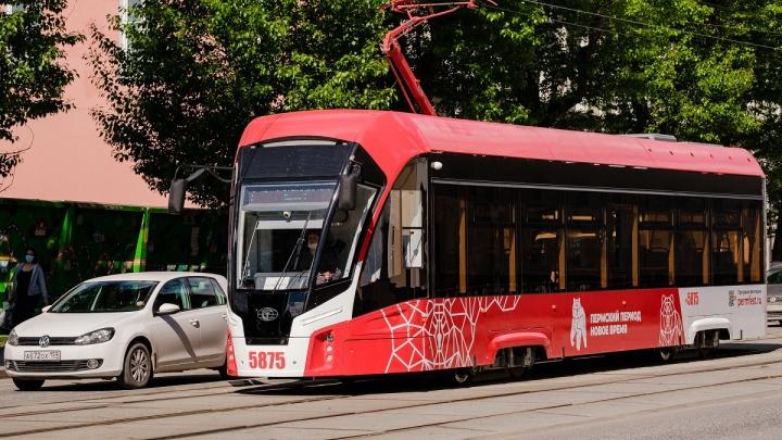 В Перми доля низкопольного общественного транспорта выросла до 79,8%