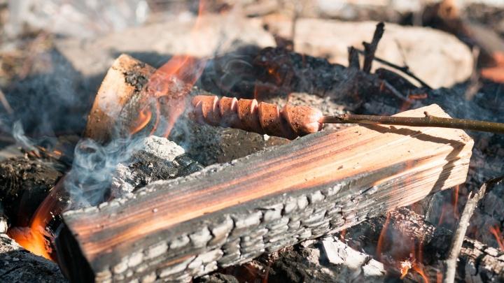 За шашлыки на даче оштрафуют: с 1января изменились противопожарные правила