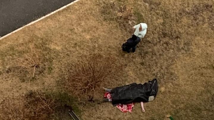 «Все лицо в синяках»: на Широкой Речке парень выпал из окна квартиры на одиннадцатом этаже