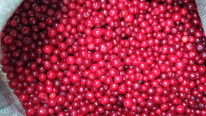 Цены от 55 рублей: замороженные овощи, ягоды и смеси начали доставлять на дом