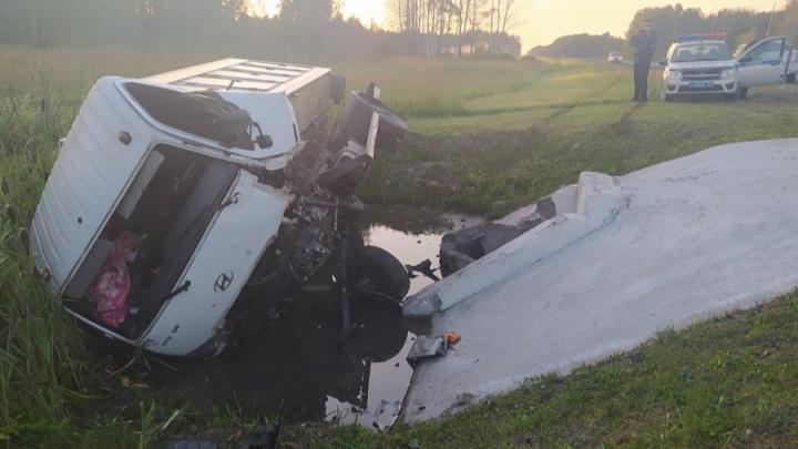 Грузовик на трассе Новосибирской области насмерть сбил пешехода и слетел в кювет