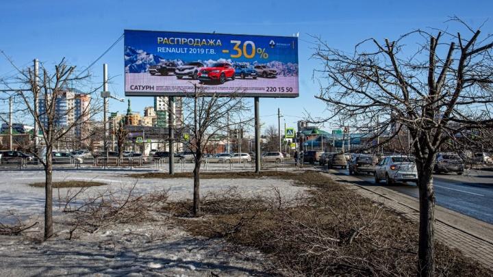 «Варварство и преступление»: в Челябинске обрезали деревья, мешающие обзору рекламы