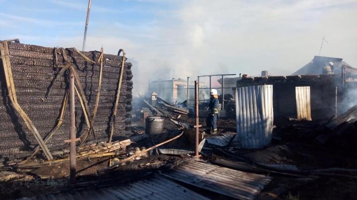 Следователи проводят проверку по факту гибели 19-летнего новосибирца на пожаре