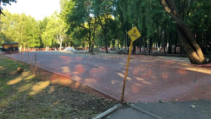 В Самаре собирают подписи против стройки в парке Гагарина