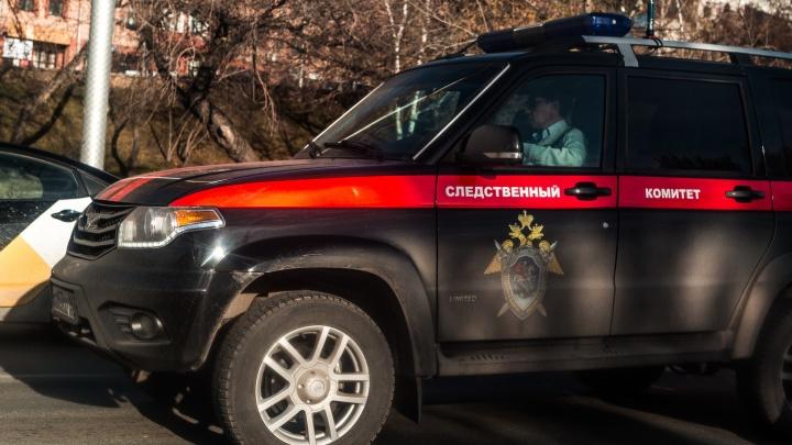 В Новосибирске следователи проверят женщину, которая шлепала по лицу маленькую девочку