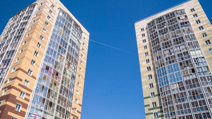 На левом берегу строят жилой комплекс с пальмами и крымскими соснами