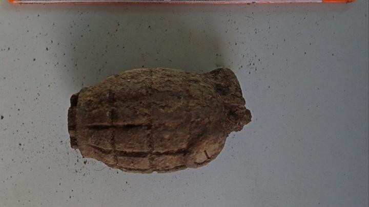 В Курганской области садоводы откопали гранату