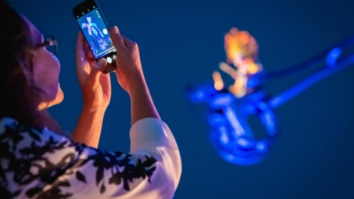 В 2020 году южане чаще всего покупали смартфоны с большой диагональю экрана