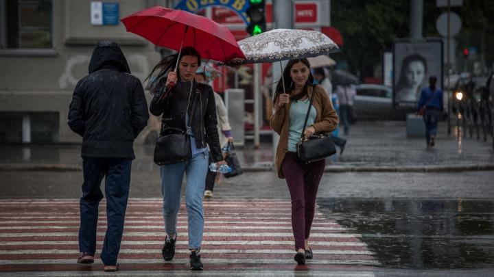 Каким будет сентябрь? Смотрим, что ждёт Новосибирск — затяжное бабье лето или морозы