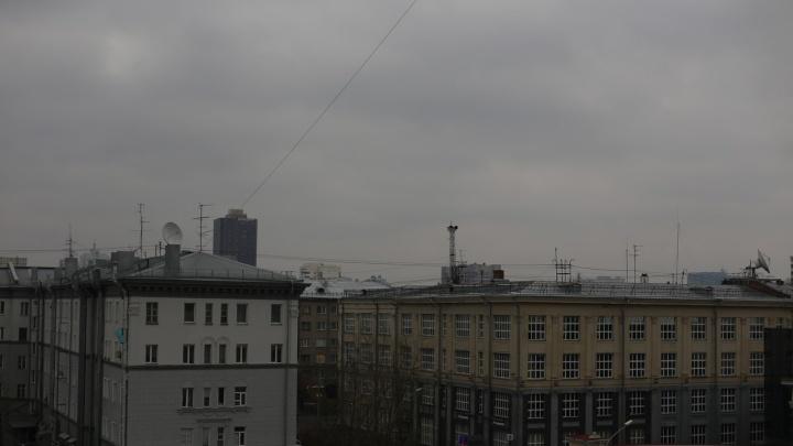 Новосибирск накрыл удушающий запах: экологи фиксируют высокий уровень загрязнения воздуха в Академгородке