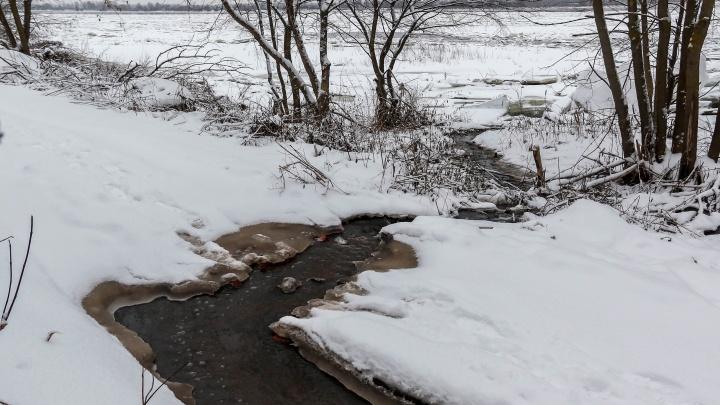 «Ниже находится водозабор Нижнего Новгорода»: как отходы бумажного производства загрязняют Волгу