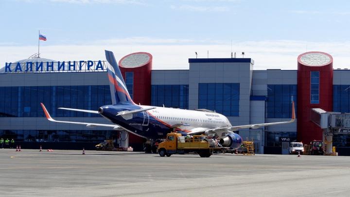 Двух пьяных волгоградцев сняли с рейса в аэропорту Калининграда