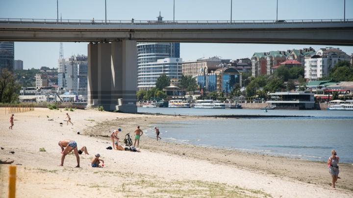 Пляж на левом берегу Дона прошел проверку МЧС. Но купаться там всё равно нельзя (вы знаете почему)