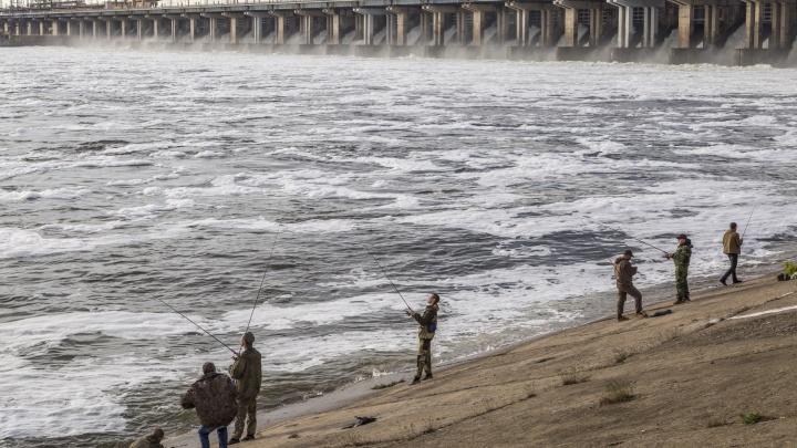 «Губернатор разрешил заниматься спортом»: волгоградские рыбаки уехали за сазанами и серебряными карасями