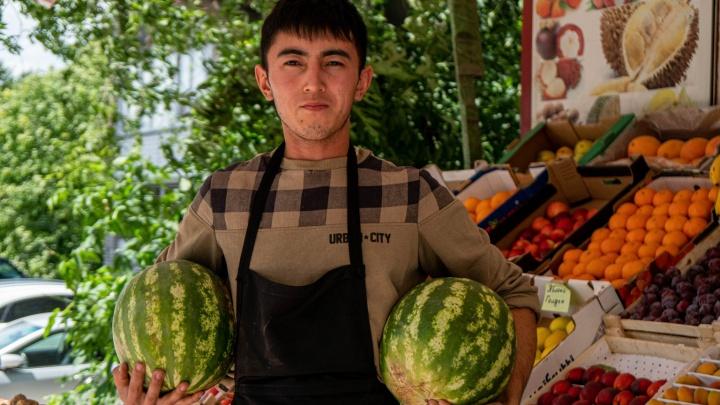 Вот это «торпеда»: сколько стоят первые арбузы и дыни в Новосибирске и как правильно их выбирать