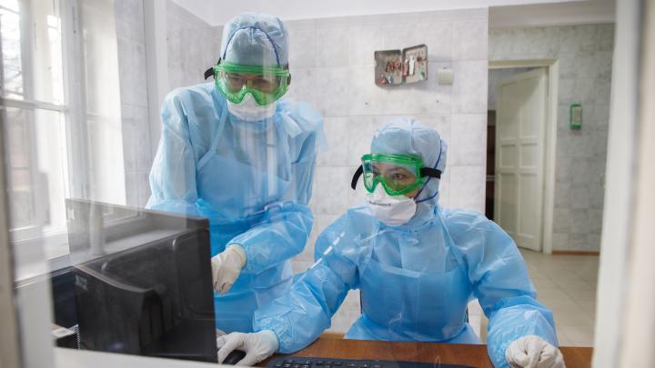 Вспышки в Камышине и Волжском: смотрим географию заражения коронавирусом в Волгоградской области