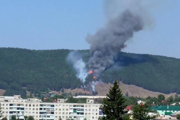Пожарные беспокоятся, что пламя перебросится на верхушки деревьев