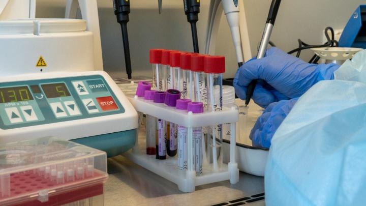 В Ростовской области подтвердили еще четыре случая заражения коронавирусом