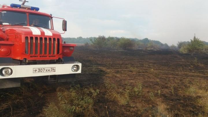 Ждём ликвидаций: в Волгоградской области взяты под контроль все природные пожары