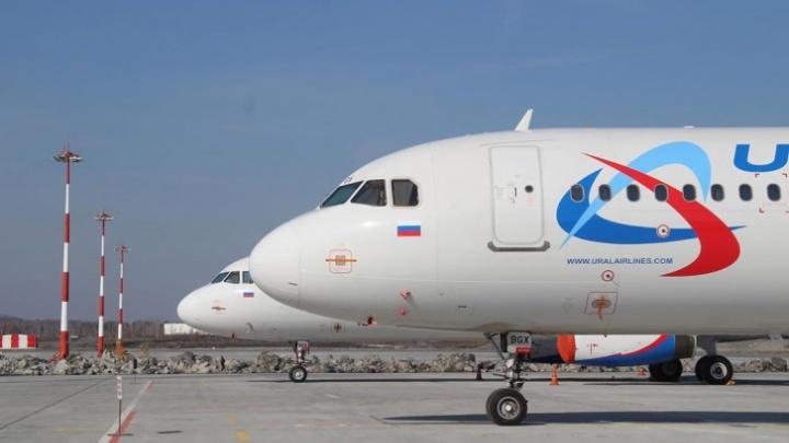 «Все наши самолеты снова в небе»: «Уральские авиалинии» вернули в работу весь авиапарк