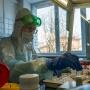 В Зауралье COVID-19 заразились ещё 14 человек