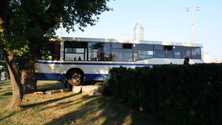 Дорожное видео недели: вылет автобуса в дерево, страшная смерть байкера и забег под трамвай