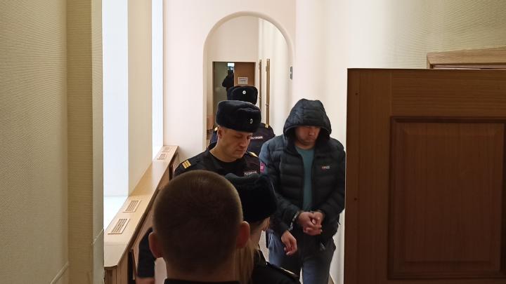 В Архангельске раскаялся владелец иномарки, который насмерть сбил женщину и собаку