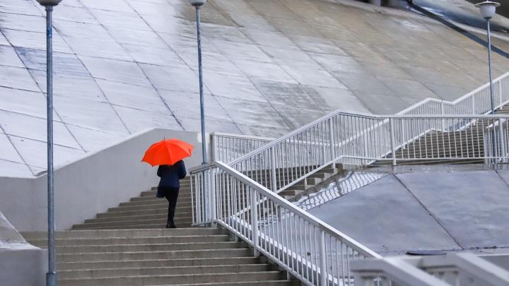 Сквозь ливень в маске: какая погода будет в Ростове на этой неделе