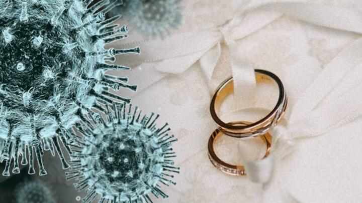 Свадьба медиков-баптистов под Екатеринбургом закончилась вспышкой COVID-19