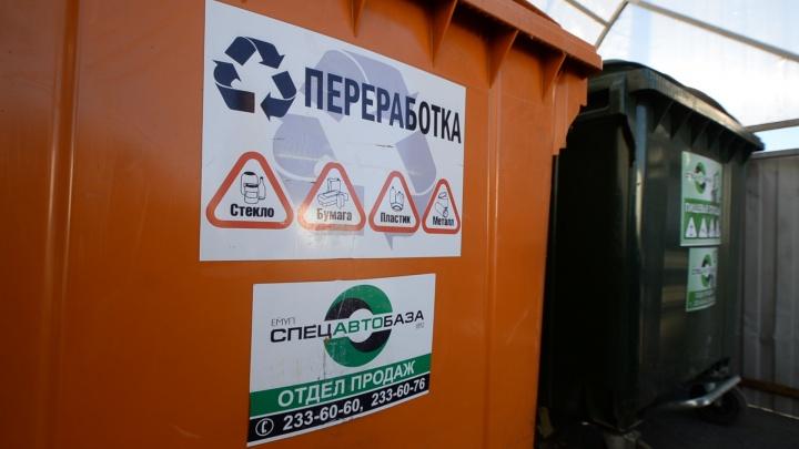 Областные власти решили построить мегазавод по переработке мусора