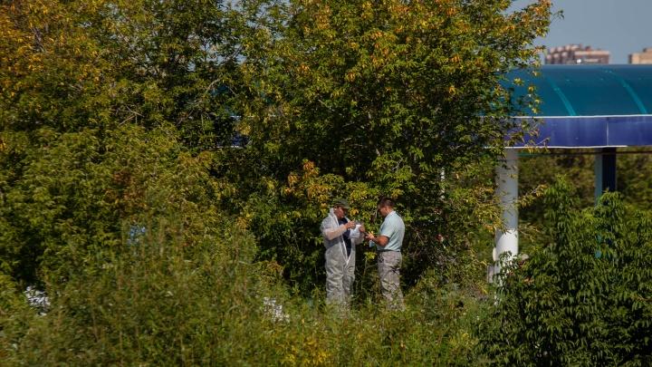 Тело Насти Муравьёвой было перемотано проводами и спрятано в несколько пакетов